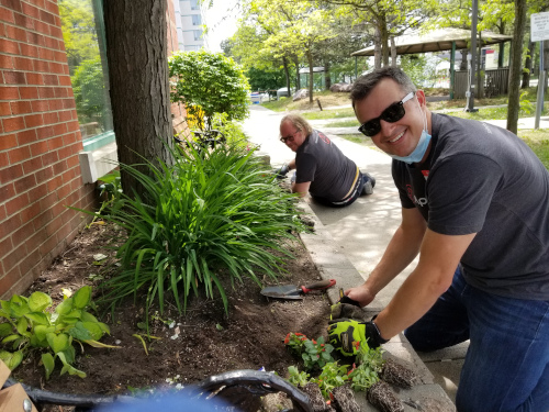 David and Skot preparing the soil in the front garden